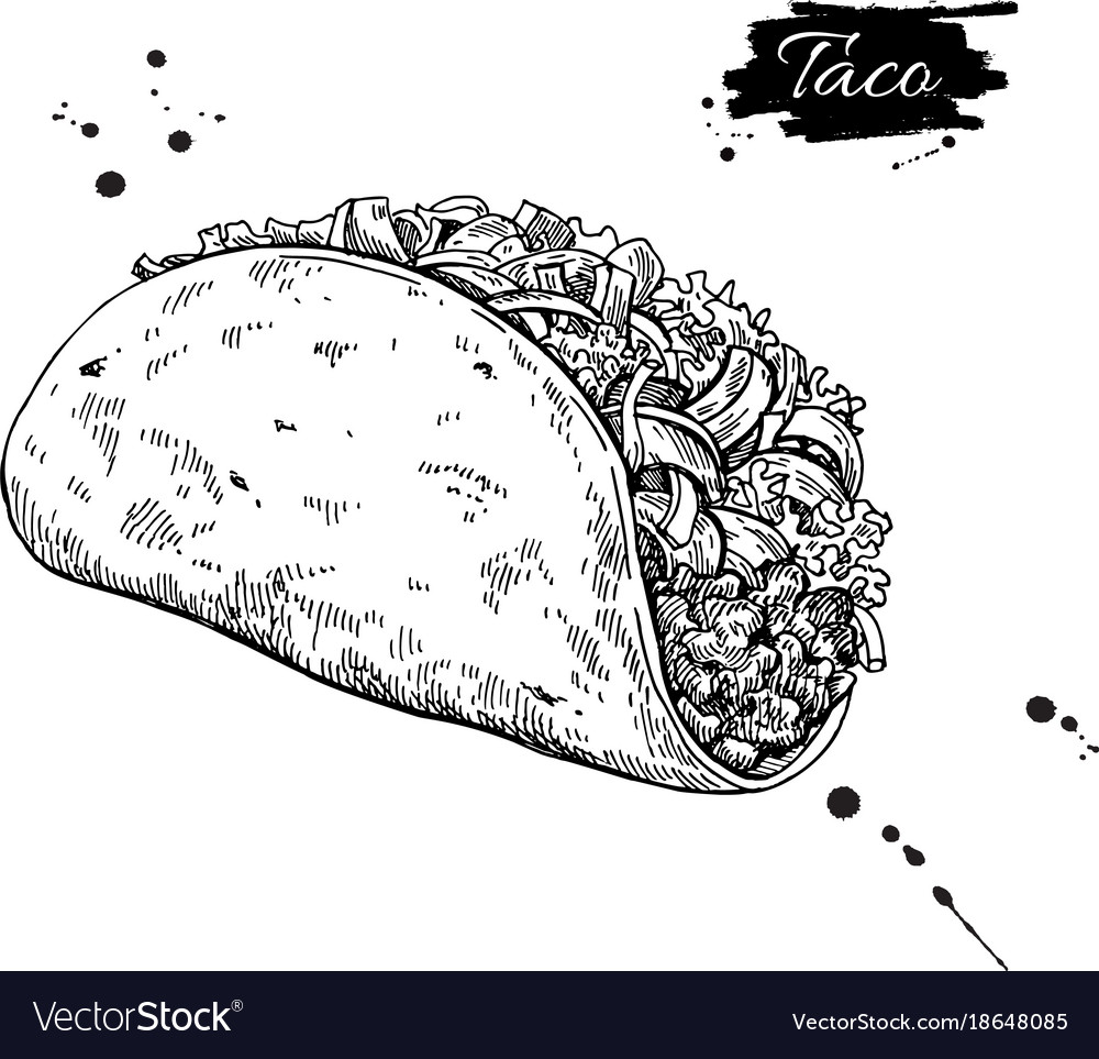 Taco Drawing Traditional Mexican Food Royalty Free Vector