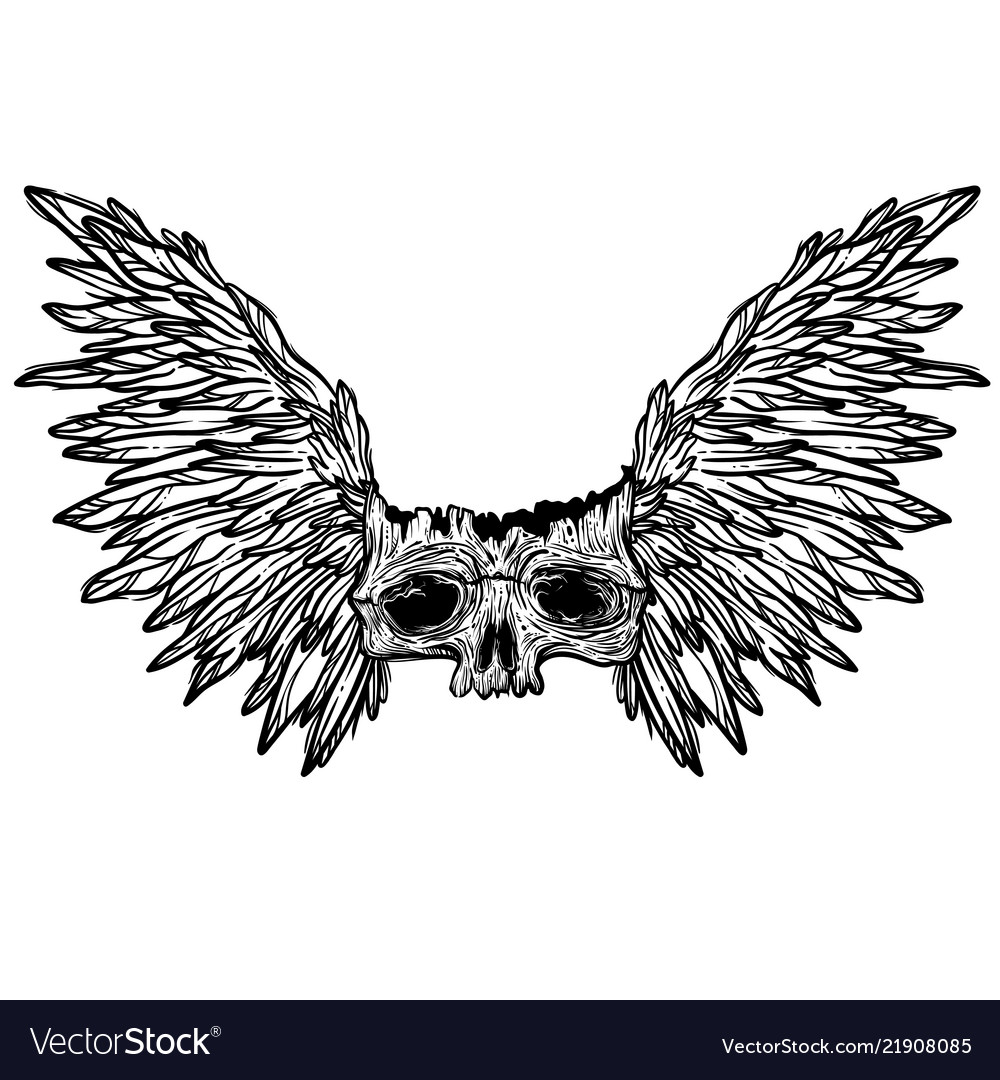 With a human skull and wings