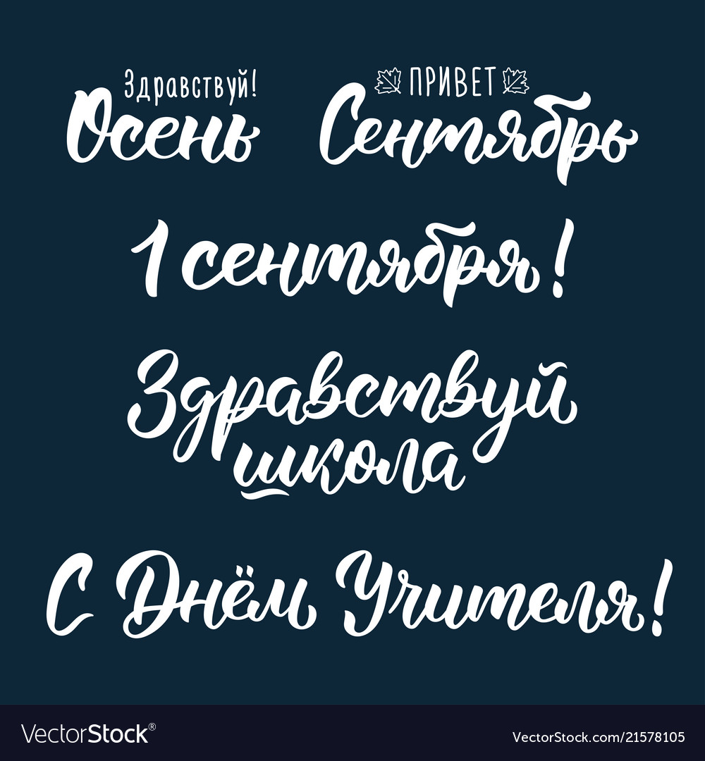A set of sentences about the school in russian