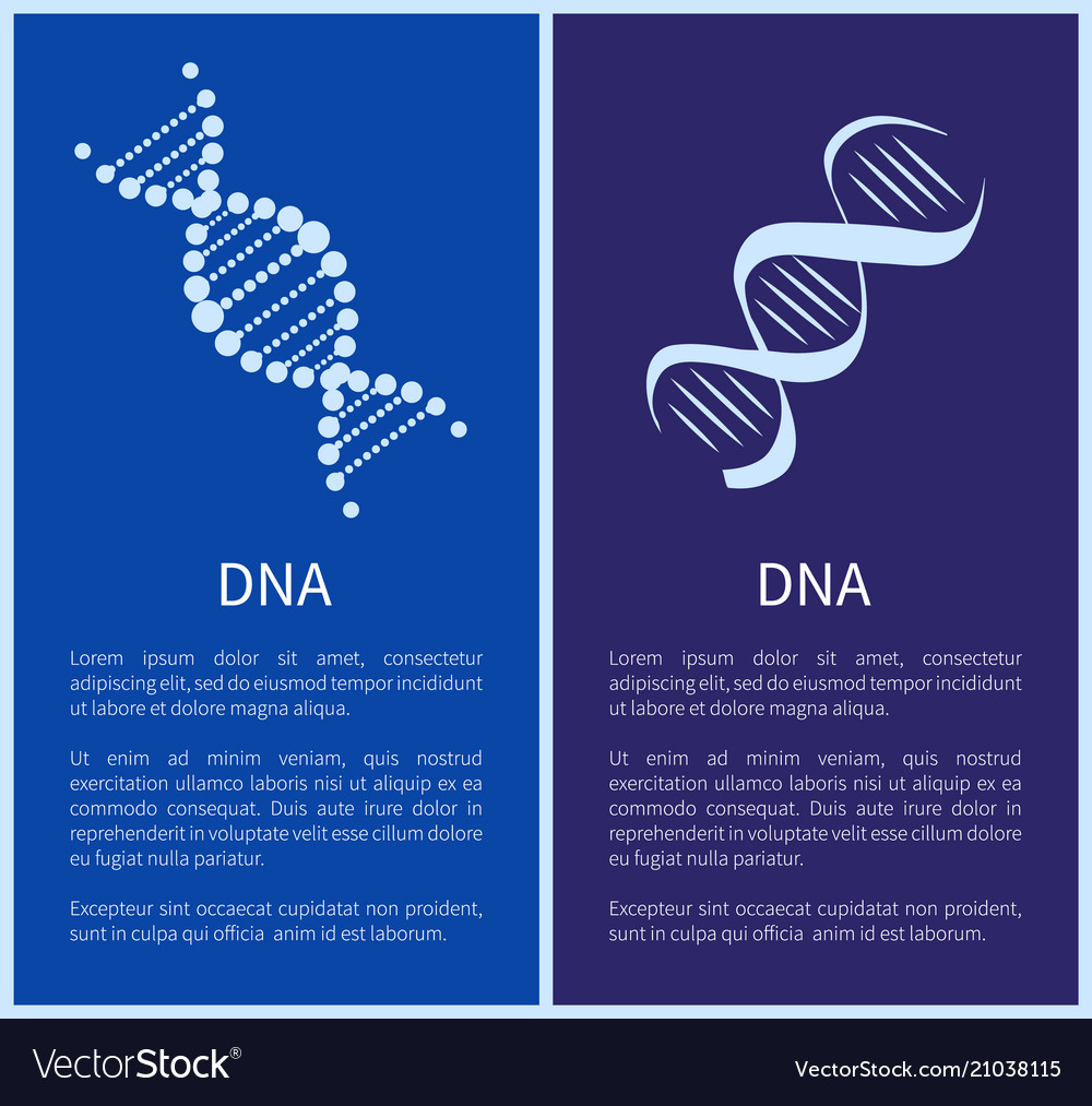 Dna set white spirals isolated on blue backdrop