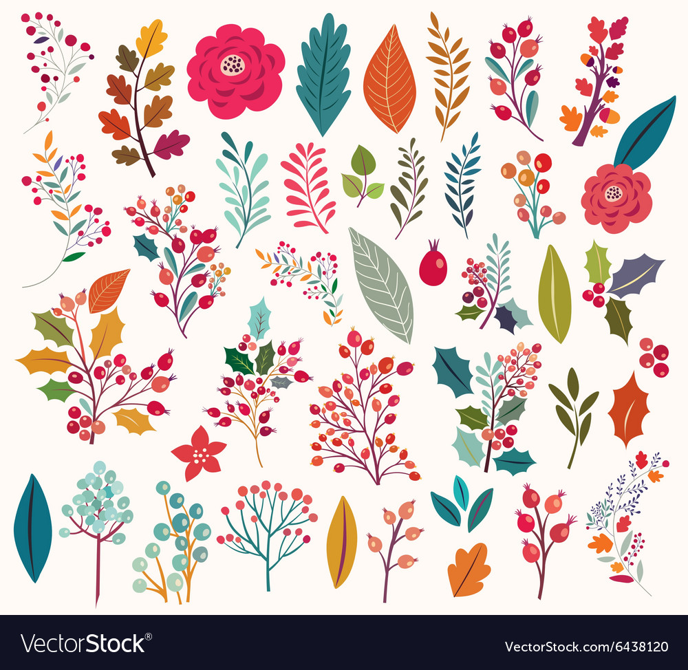 Floral elements and leaves