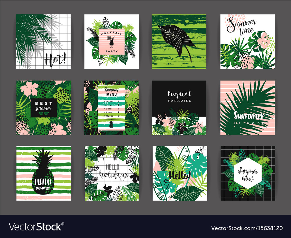 Set of summer tropical designs templates
