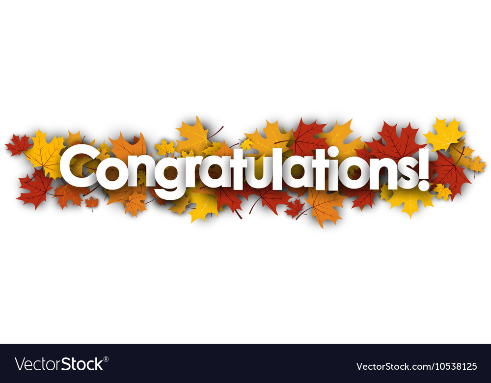congratulations banner with maple leaves vector image