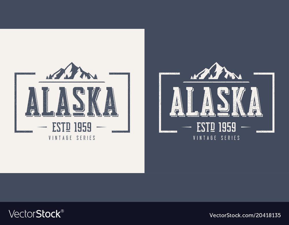 Alaska state textured vintage t-shirt and