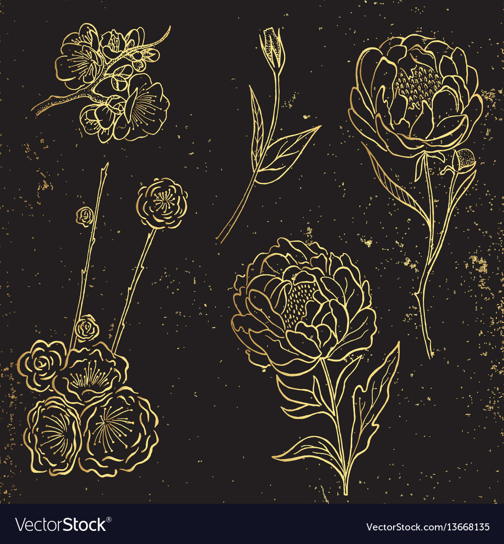 Collection of gold hand drawn peony and