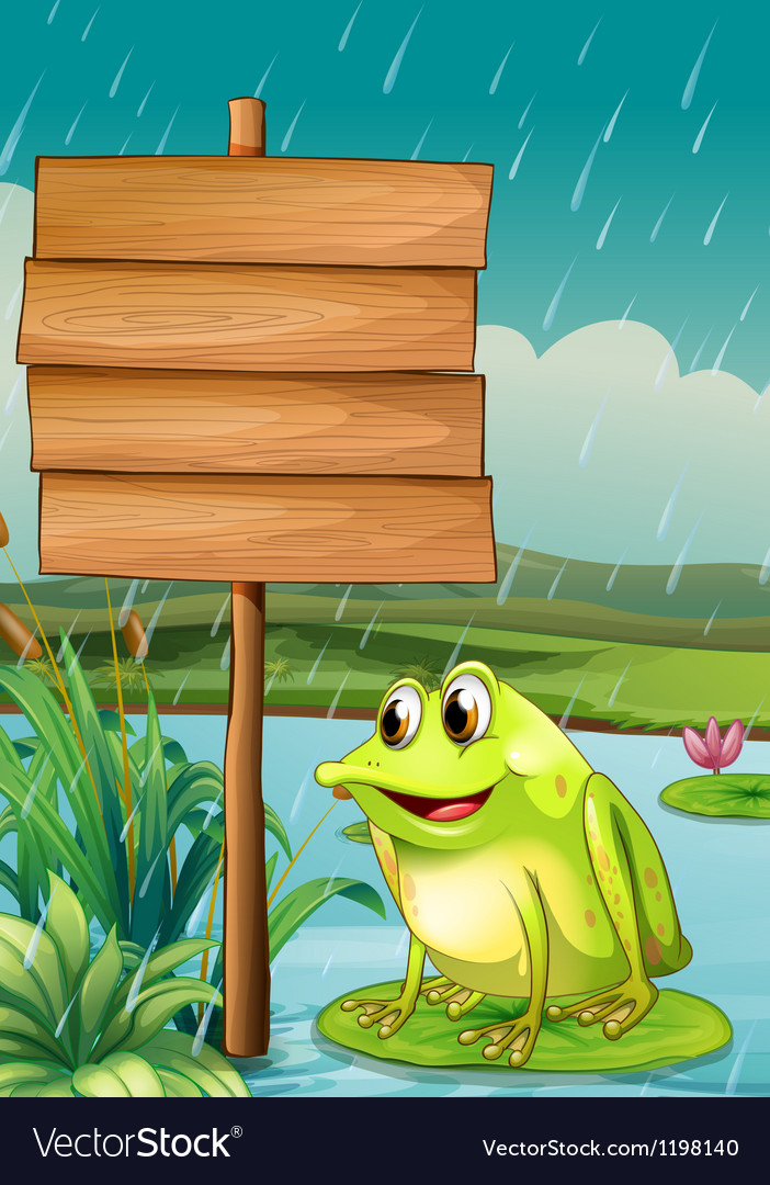 A frog near an empty wooden board