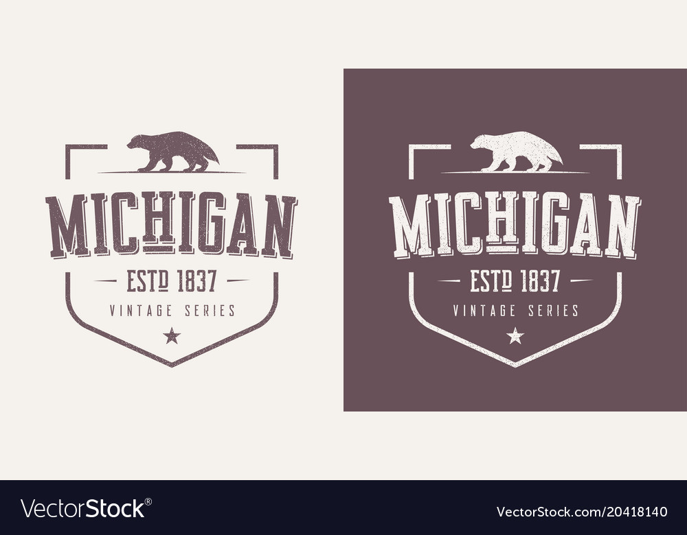 Michigan state textured vintage t-shirt and