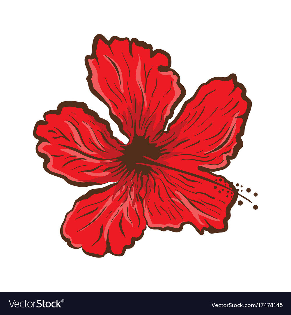 Hibiscus flower in tattoo style graphic tropical vector image izmirmasajfo