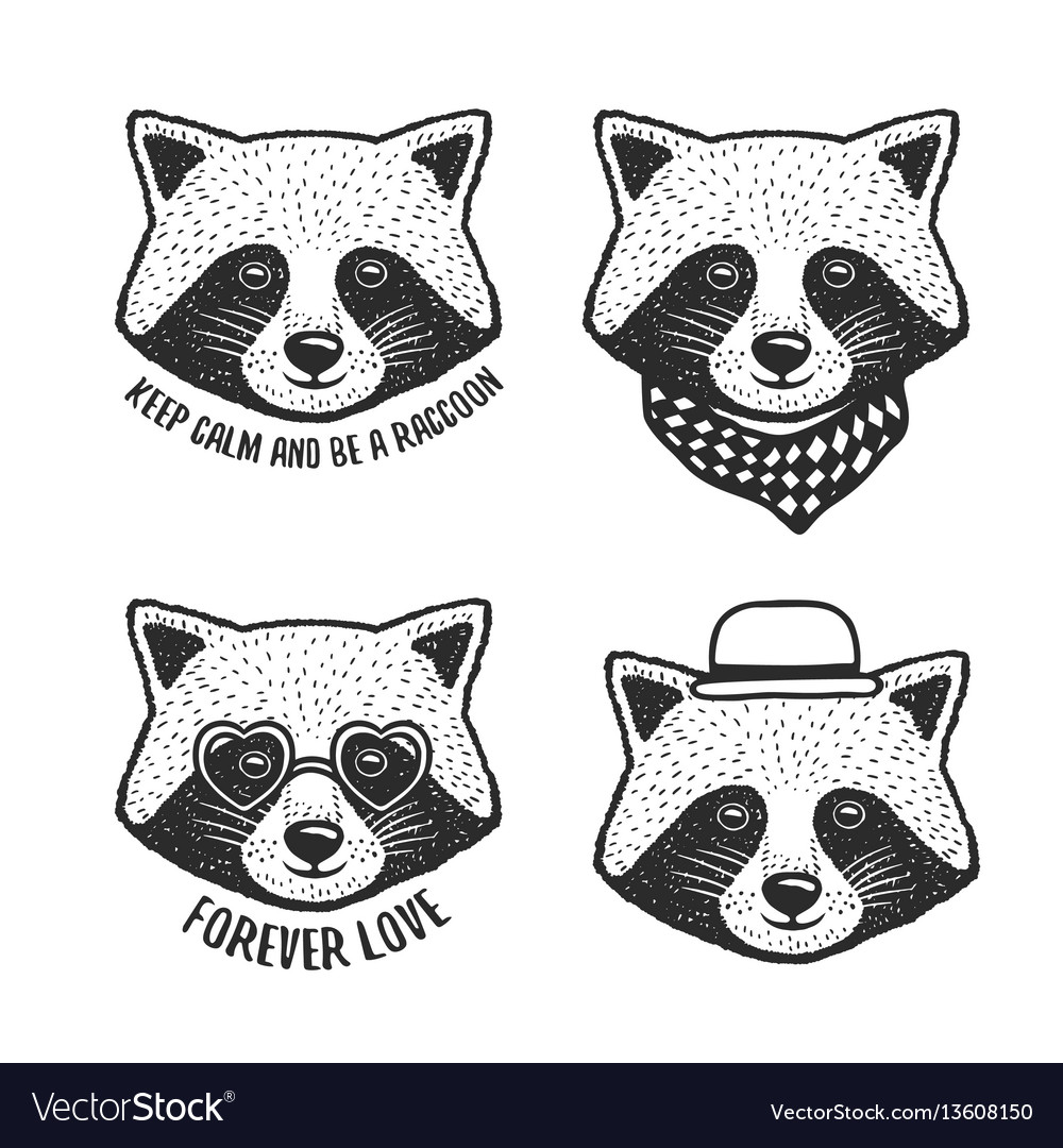 Hand drawn cartoon raccoon head prints set