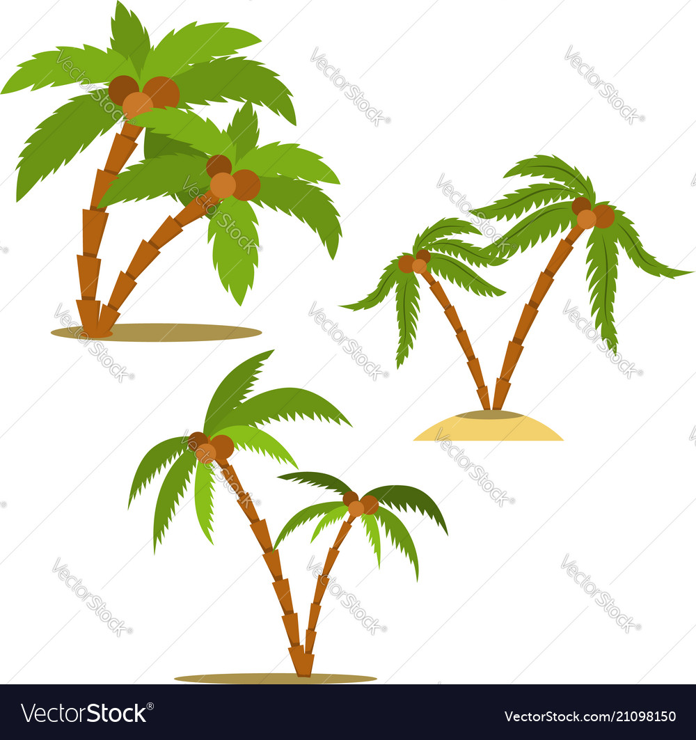 Set of palm in cartoon style design element for