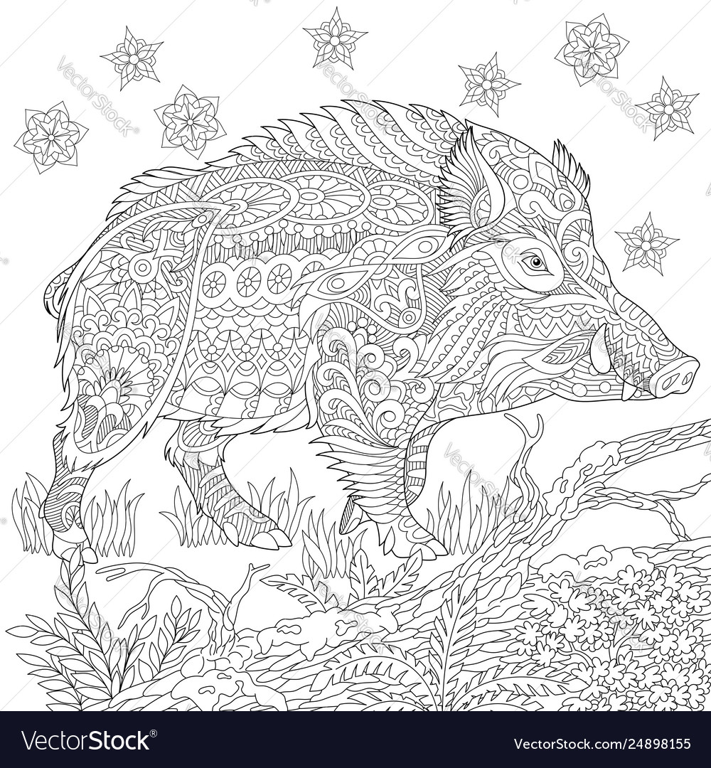Wild boar adult coloring page
