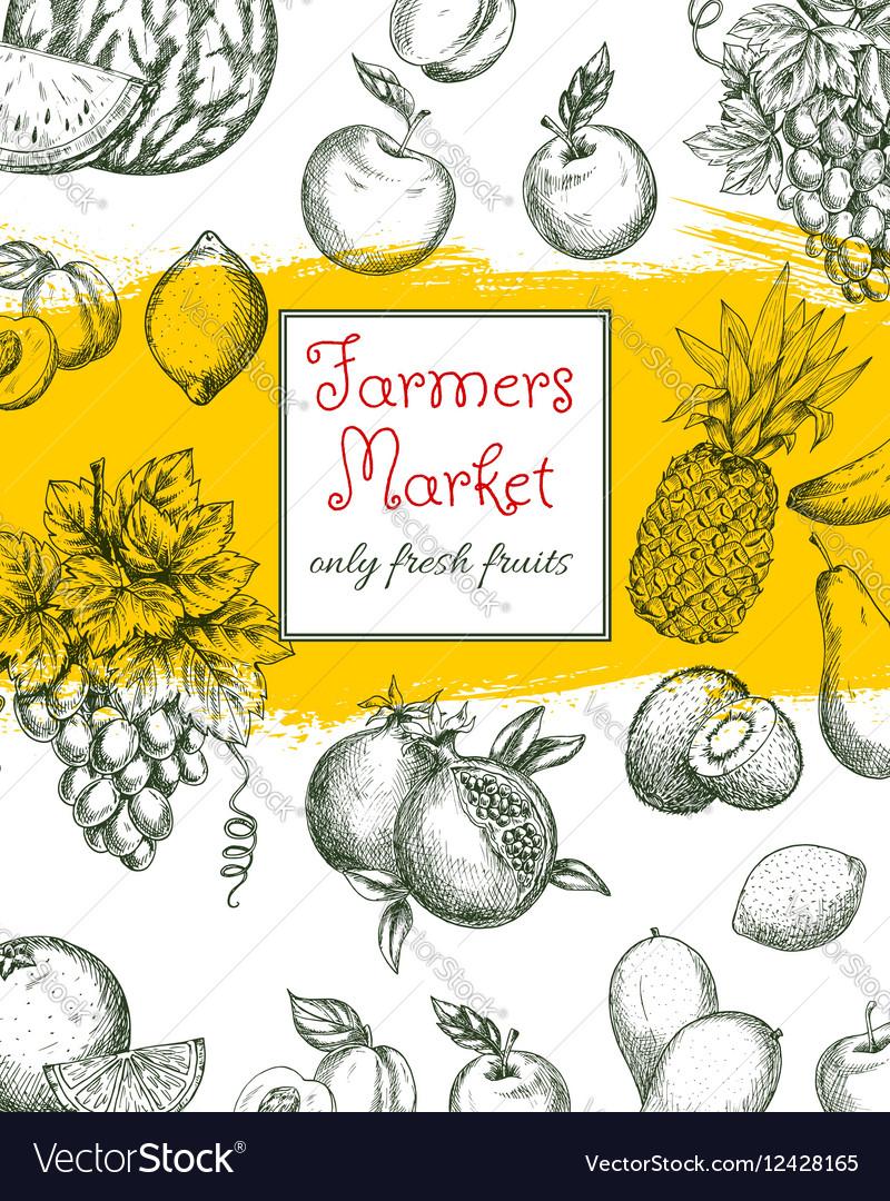Fruit poster of natural farm market fruits