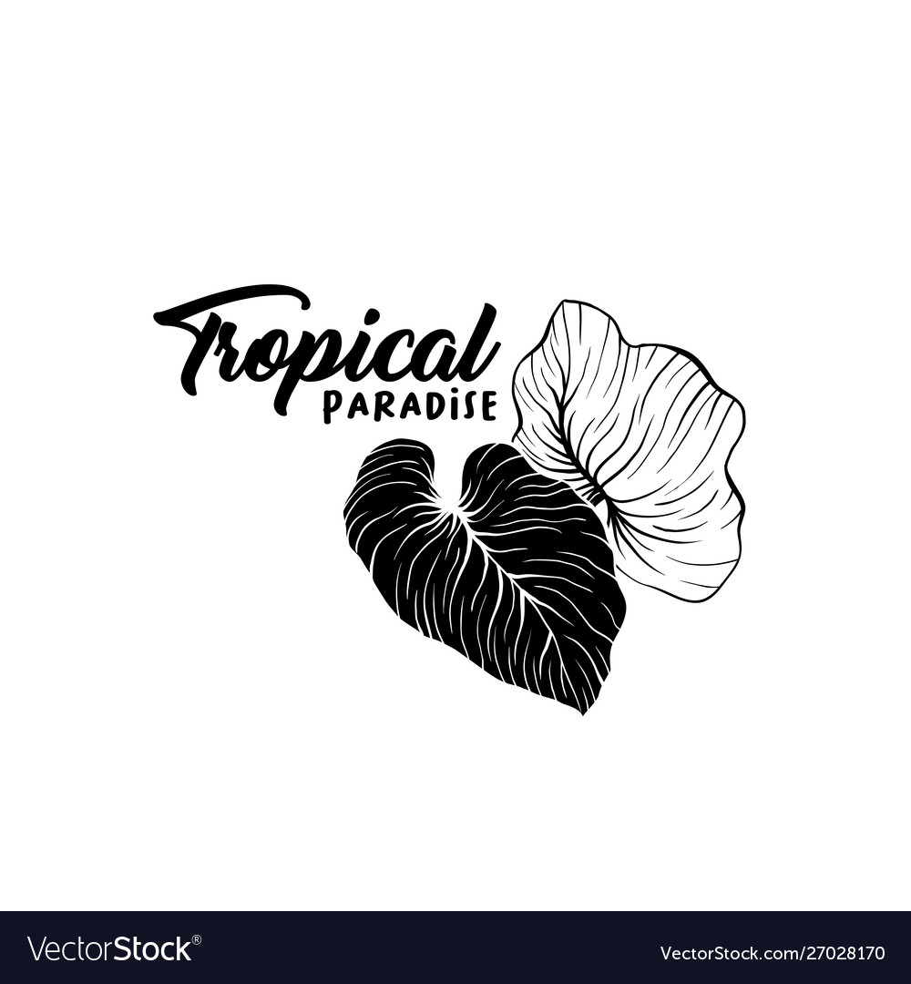 Beach party hand drawn silhouette logo layout