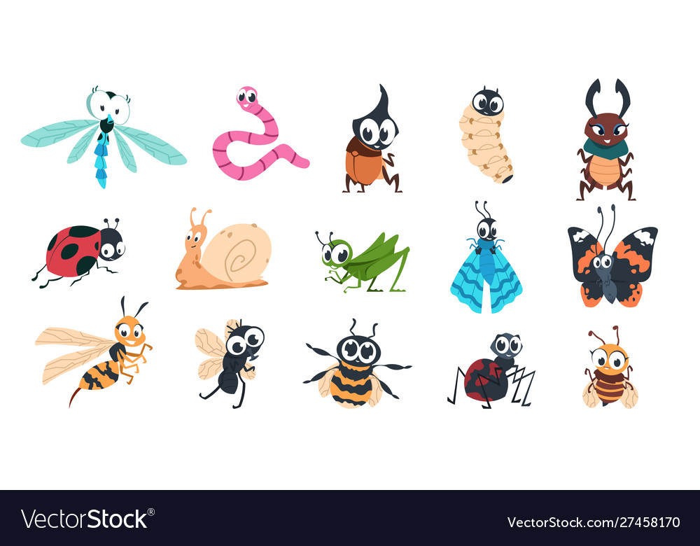 Funny bugs cartoon cute insects with faces