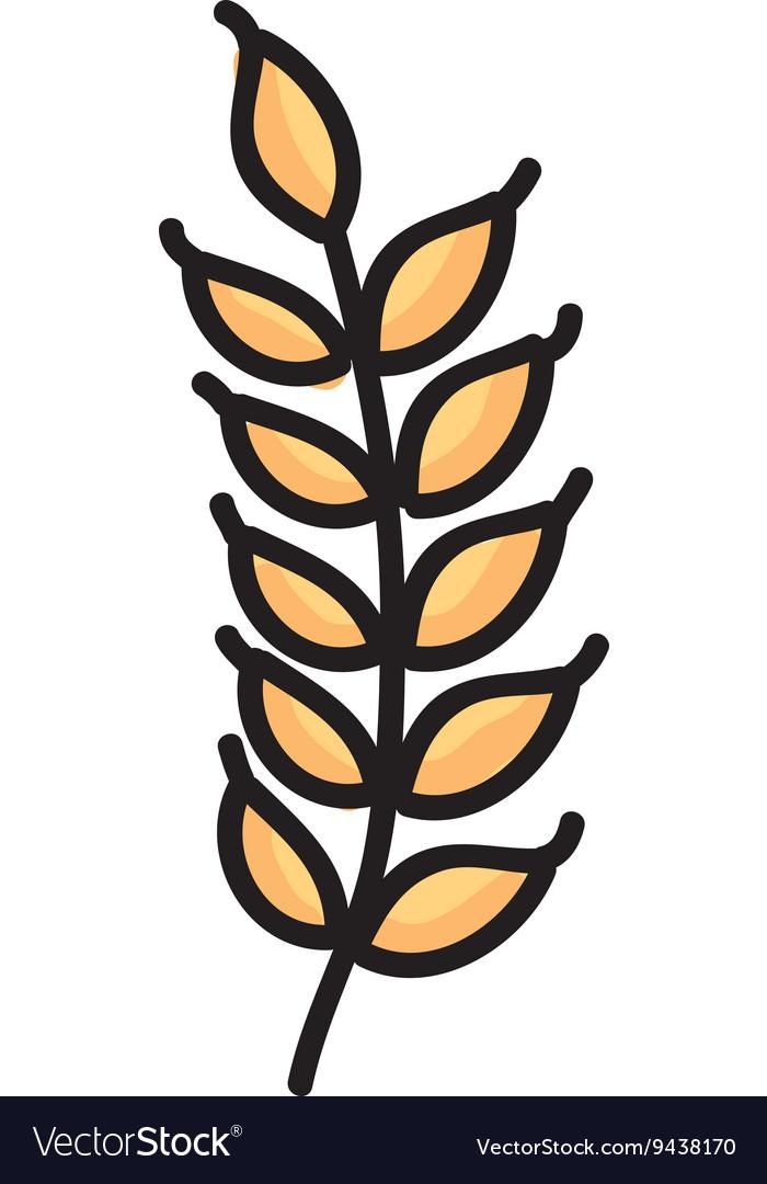 Gluten leaf isolated icon design