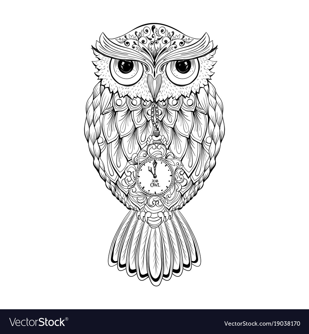 Owl bird isolated with clock face on stomach on
