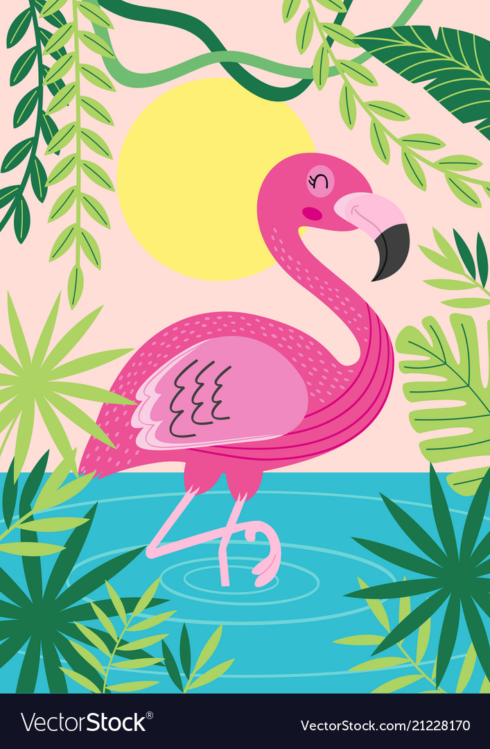 Pink flamingo in tropical nature
