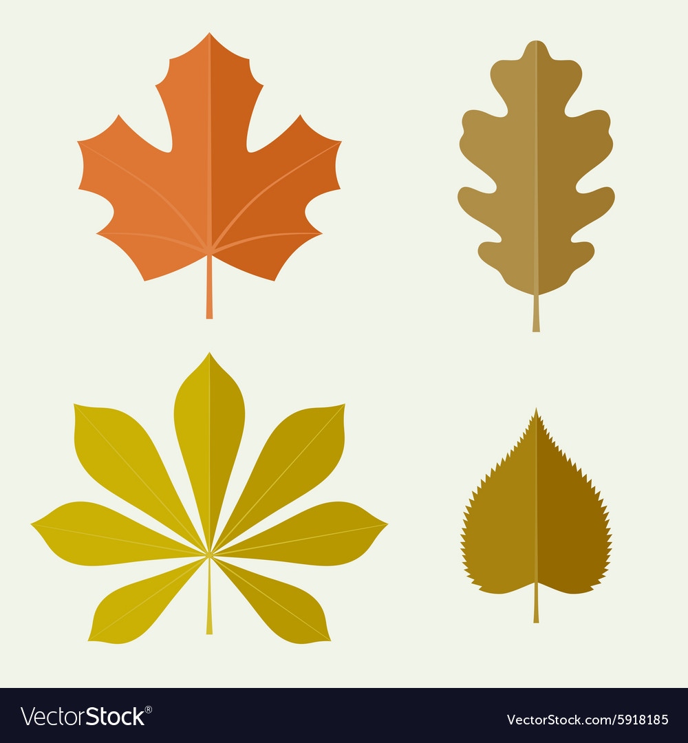 Autumn leaves in flat style
