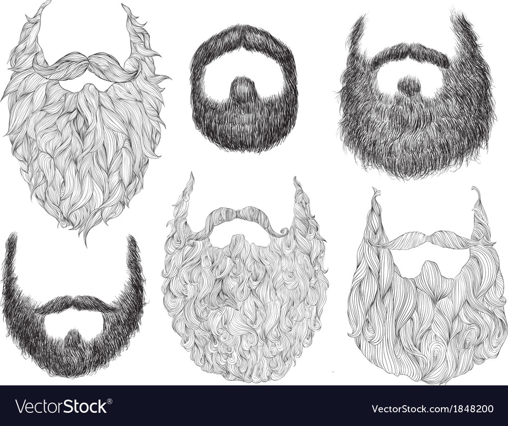 Hand Drawn Beard Set vector image