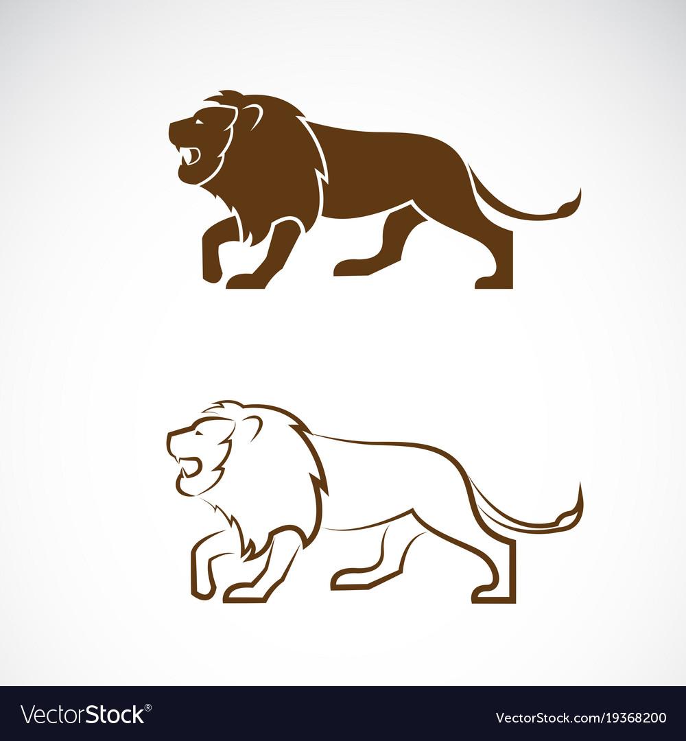Male lion design on white background wild