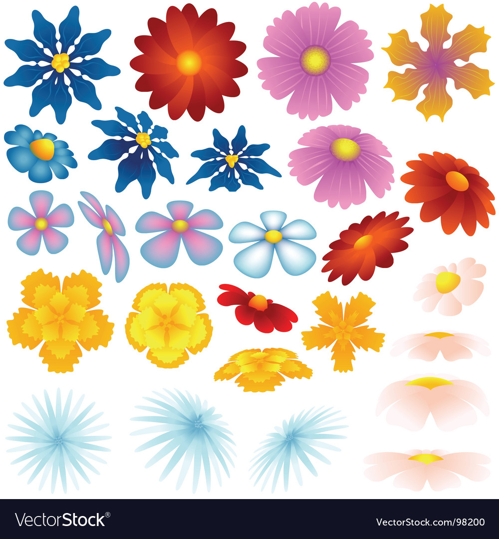 Spring flowers royalty free vector image vectorstock spring flowers vector image mightylinksfo