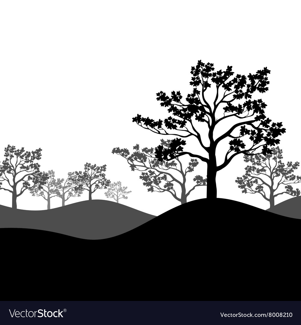 Tree Sakura Silhouette With Landscape Royalty Free Vector