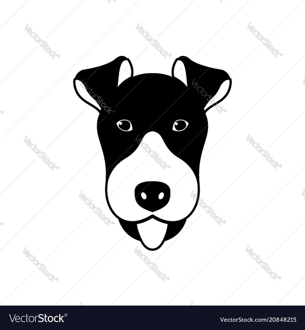 Portrait of fox terrier
