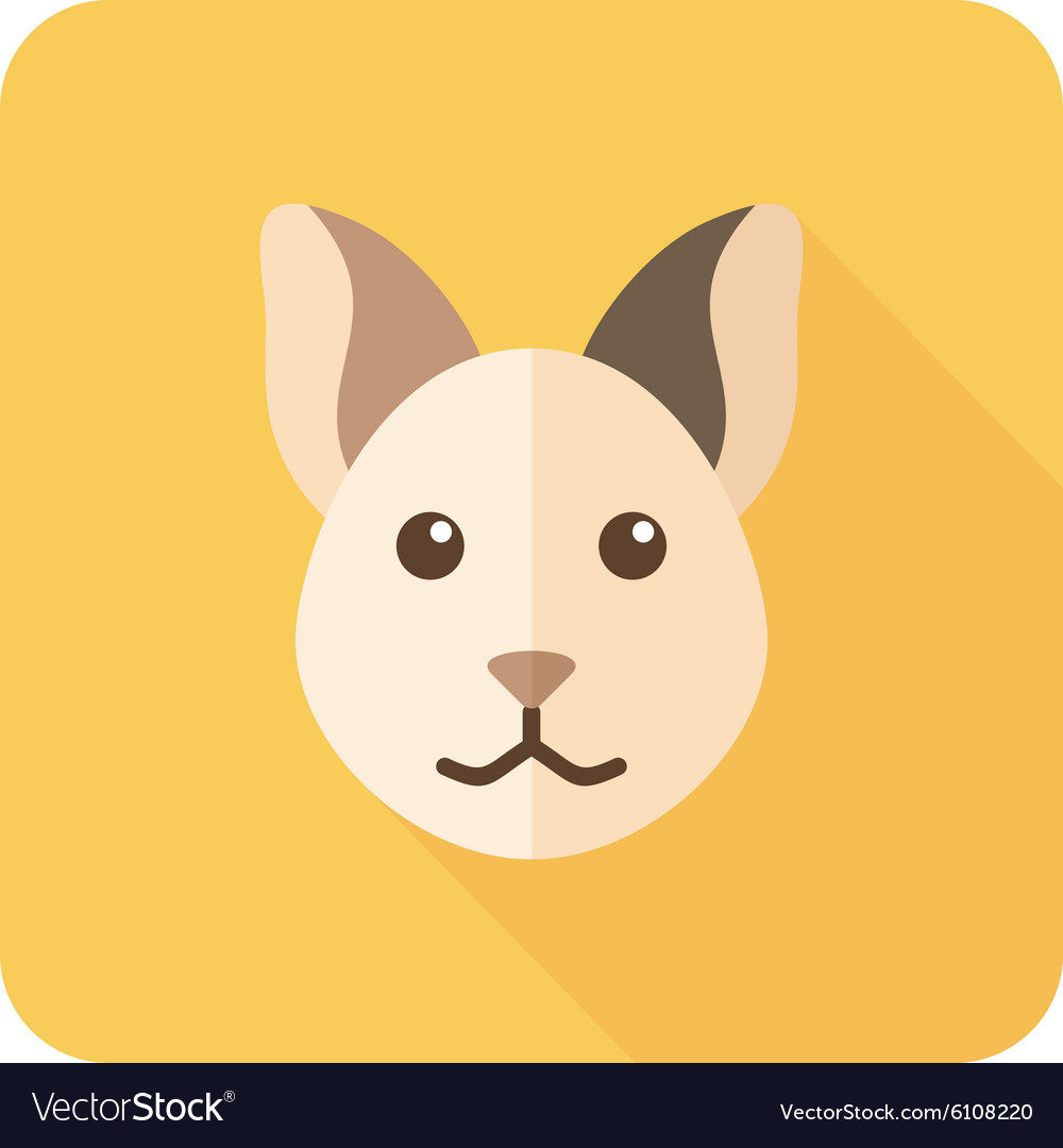 Cat flat icon with long shadow vector image