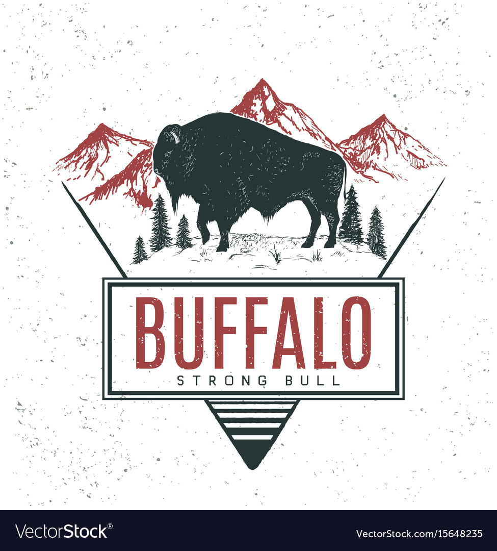 Old retro logo with bull buffalo vector image