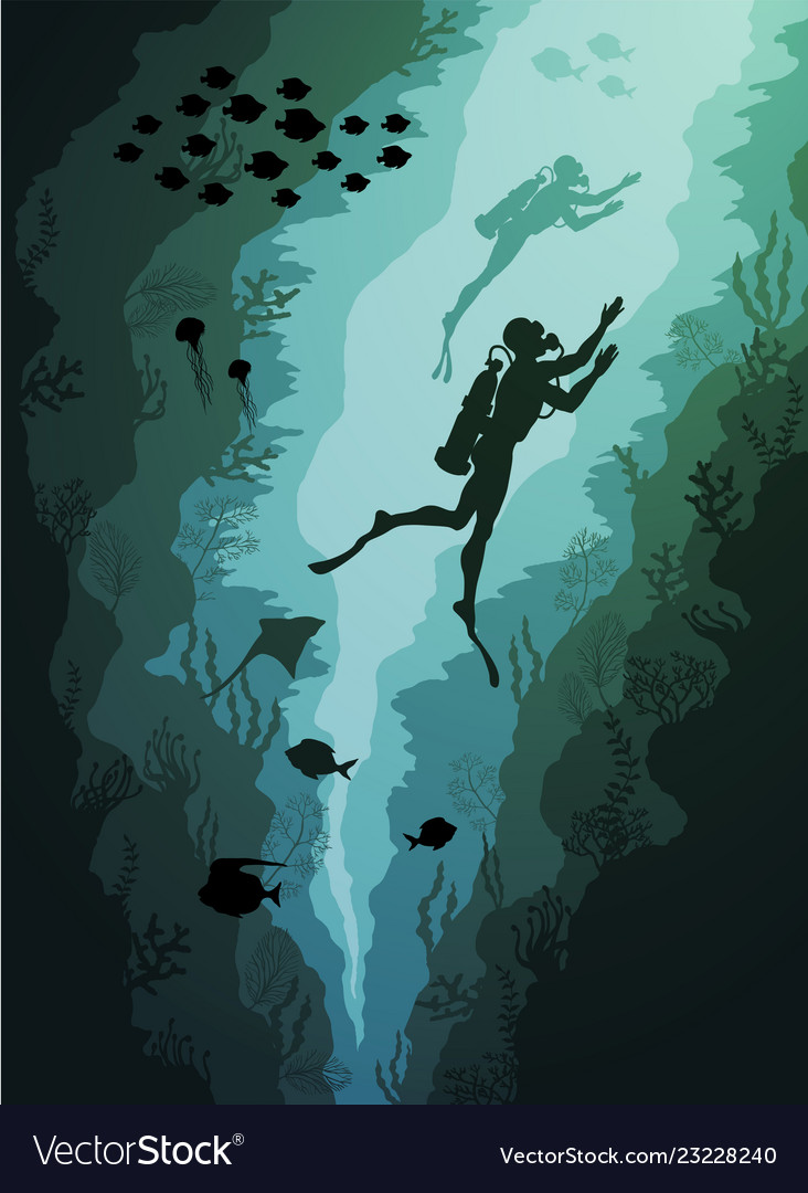 Coral reef and underwater divers and fish algae