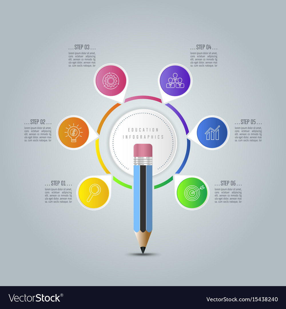 education infographics template 6 step option vector image