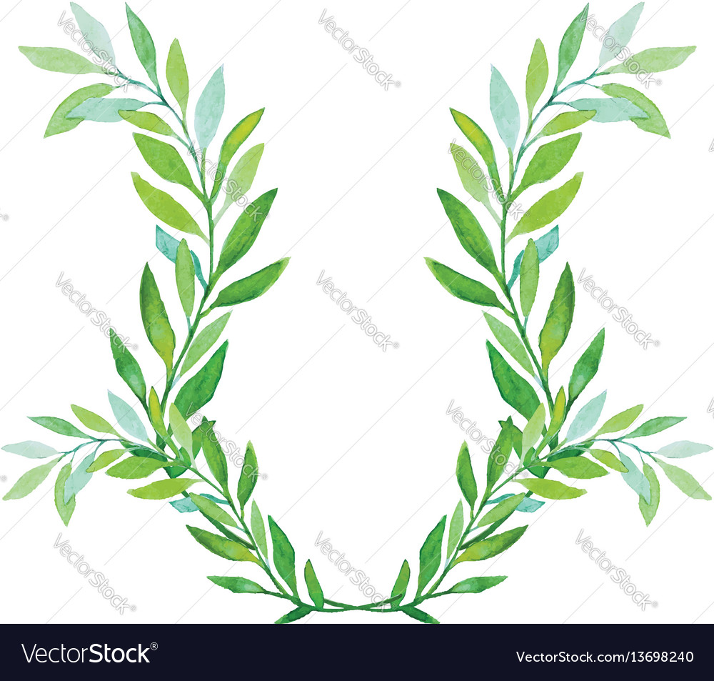 Watercolor laurel wreath isolated on white