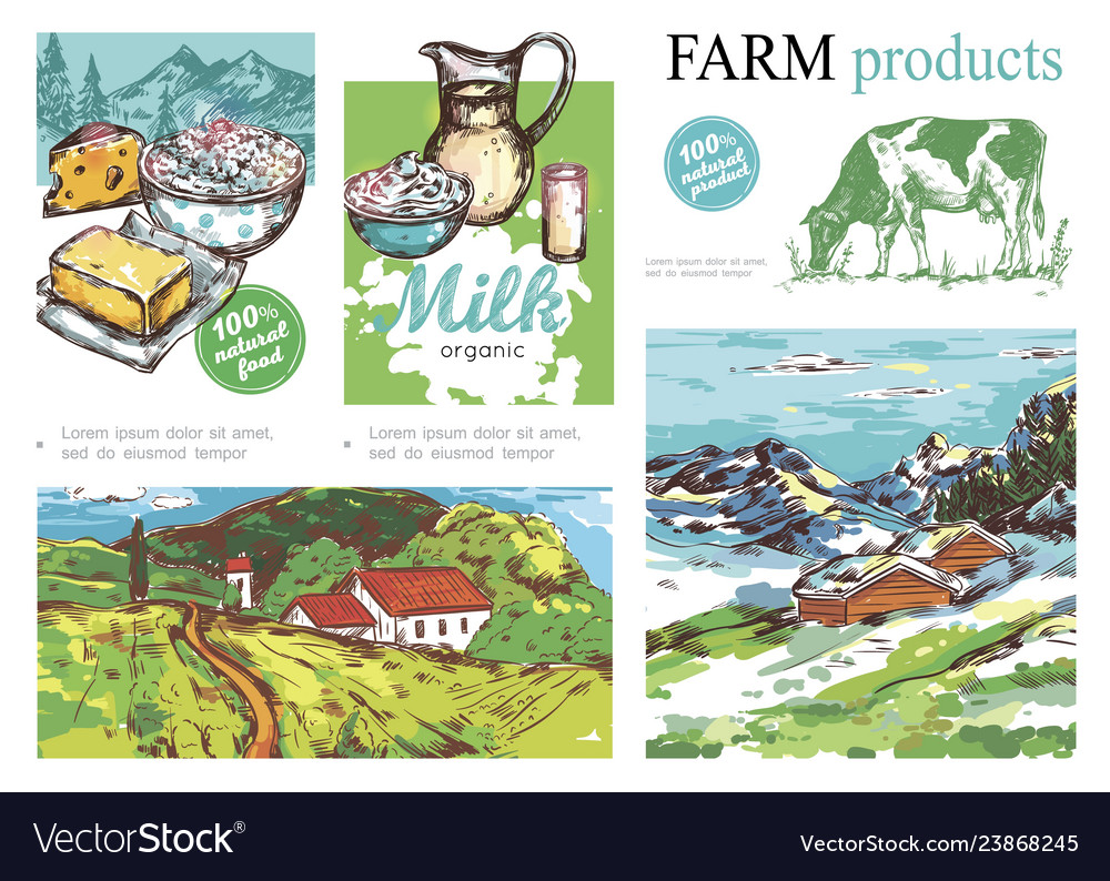 Sketch farm colorful composition