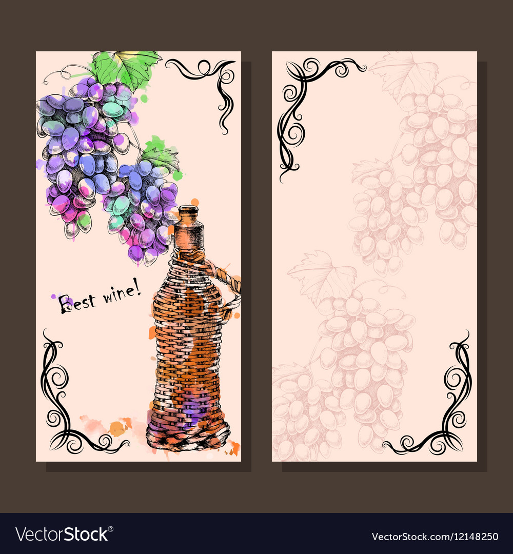 Card with grapes wine on hand-drawing style