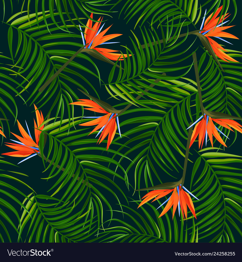 Dark tropical background palm leaves and bird of