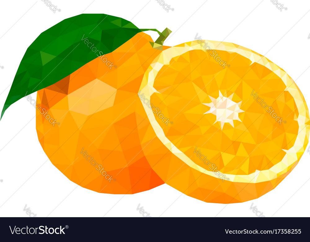 Low poly orange vector image
