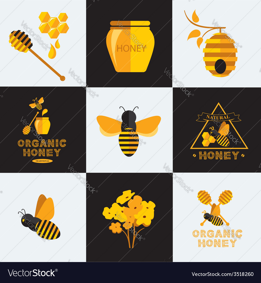 Set Honey icons and labels vector image