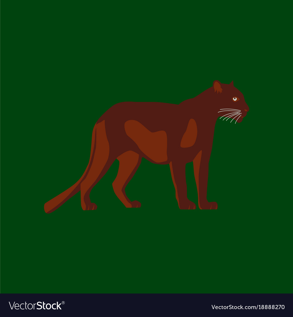 In flat style panther vector image