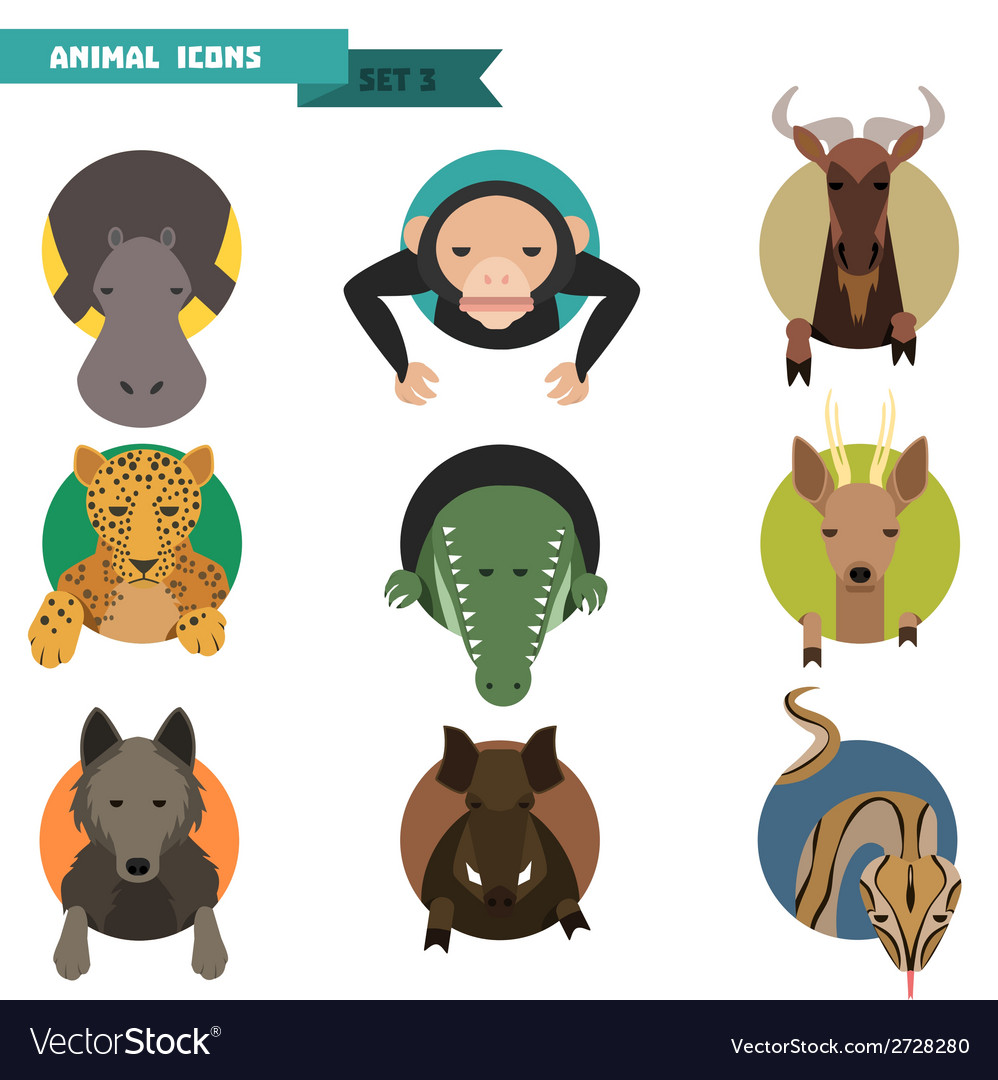 Animal avatars vector image