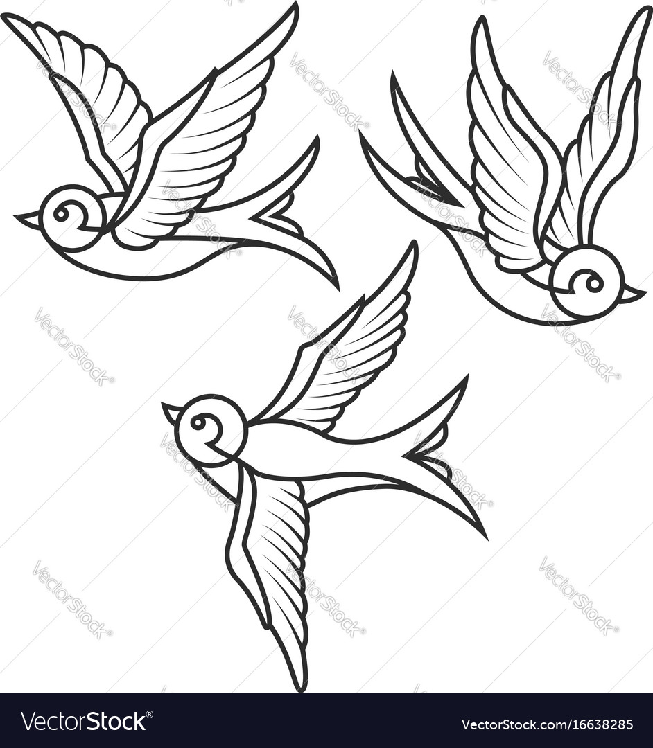 Set of swallow tattoo templates isolated on white