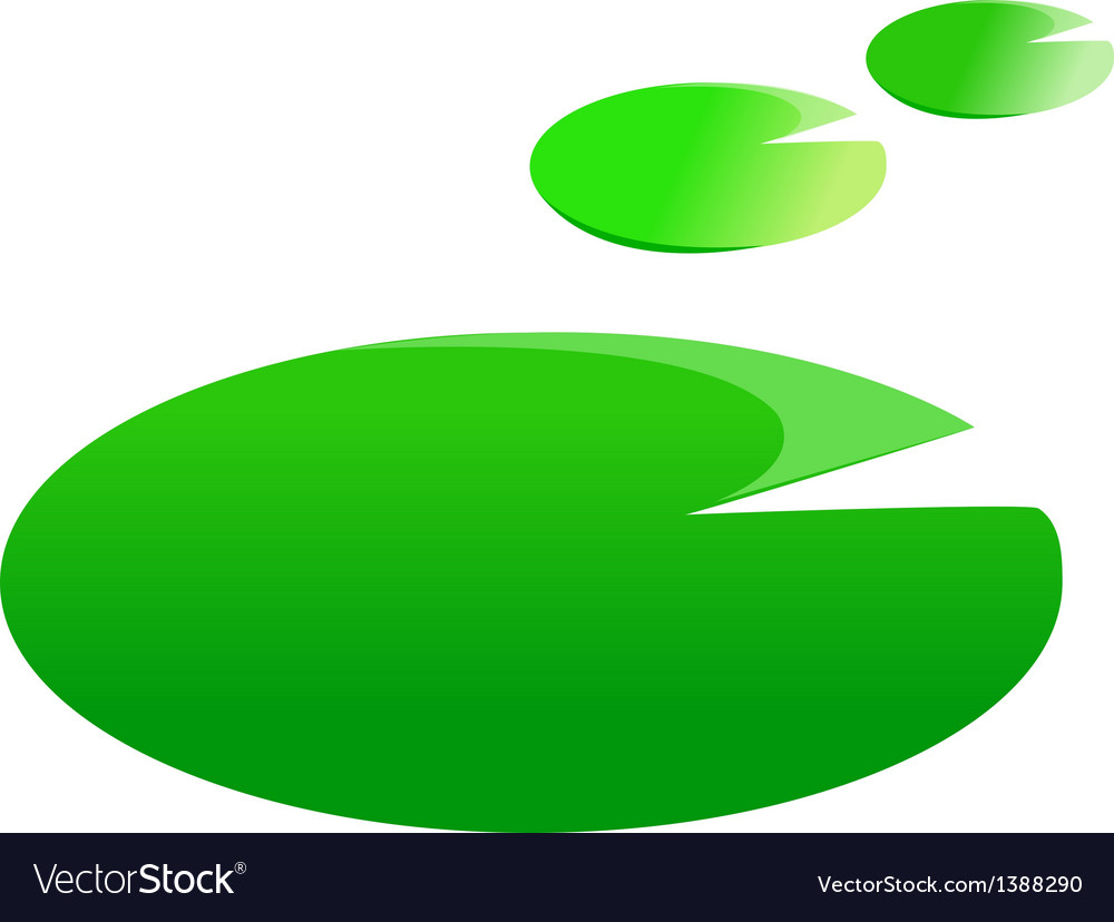 A view of a lotus leaf vector image