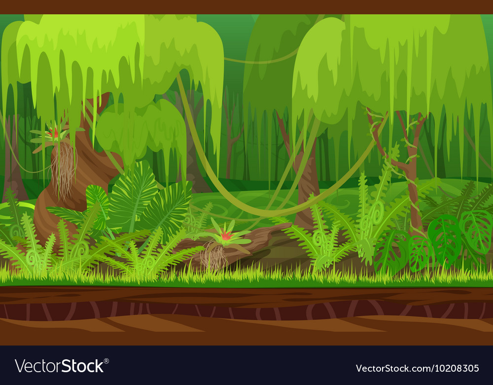Cartoon color nature tropical rain jungle forest