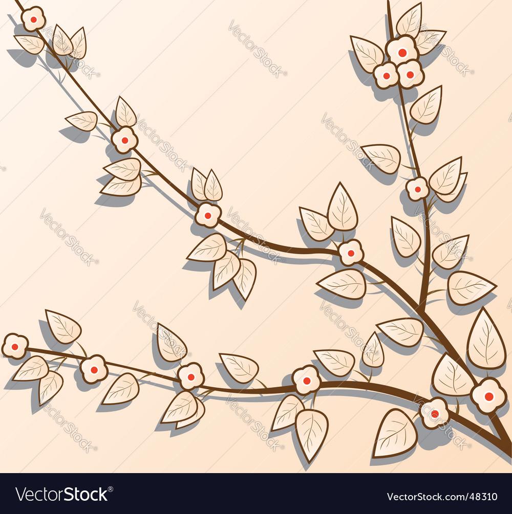 Sacra branch