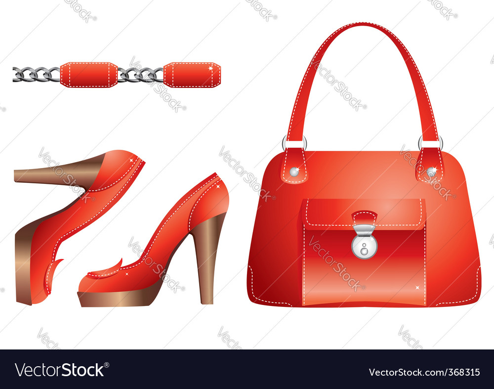 Bags and shoes vector image