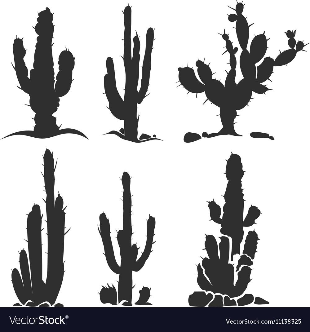 Desert cactus silhouette plants isolated on