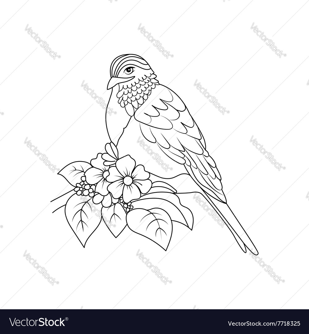 Sketch To Bird Sitting On Branch Royalty Free Vector Image