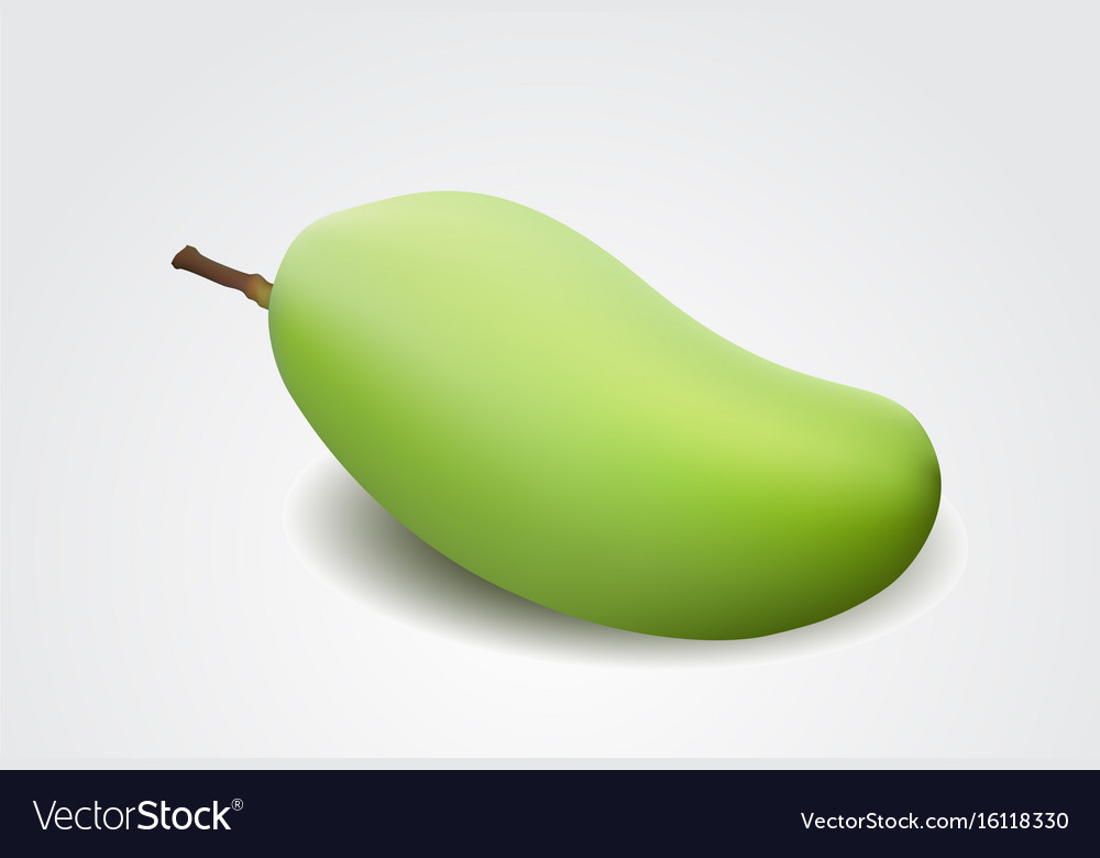 Green mango isolated on a white background