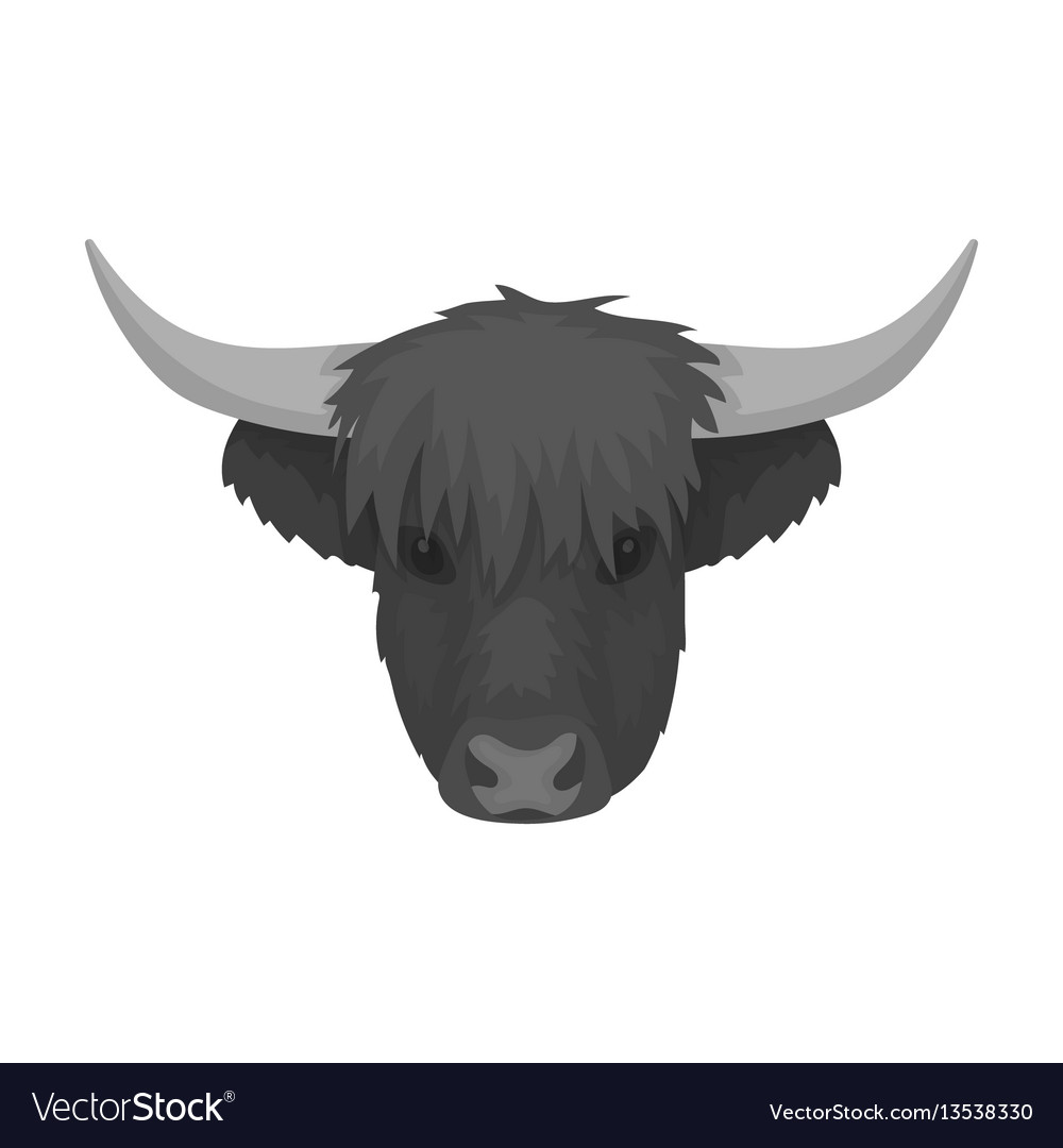 Highland cattle head icon in monochrome style