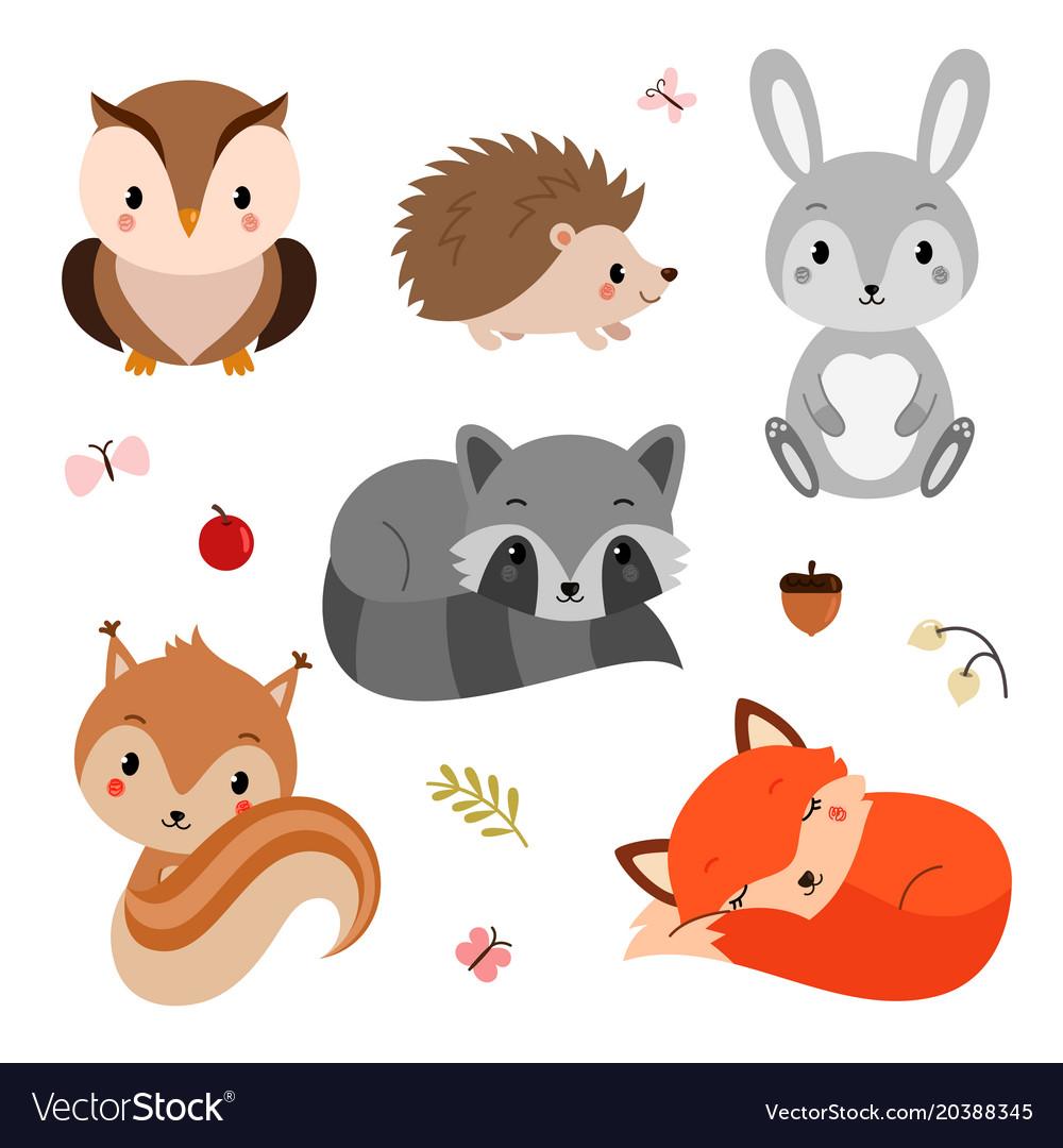 Graphic Design Forest Animal