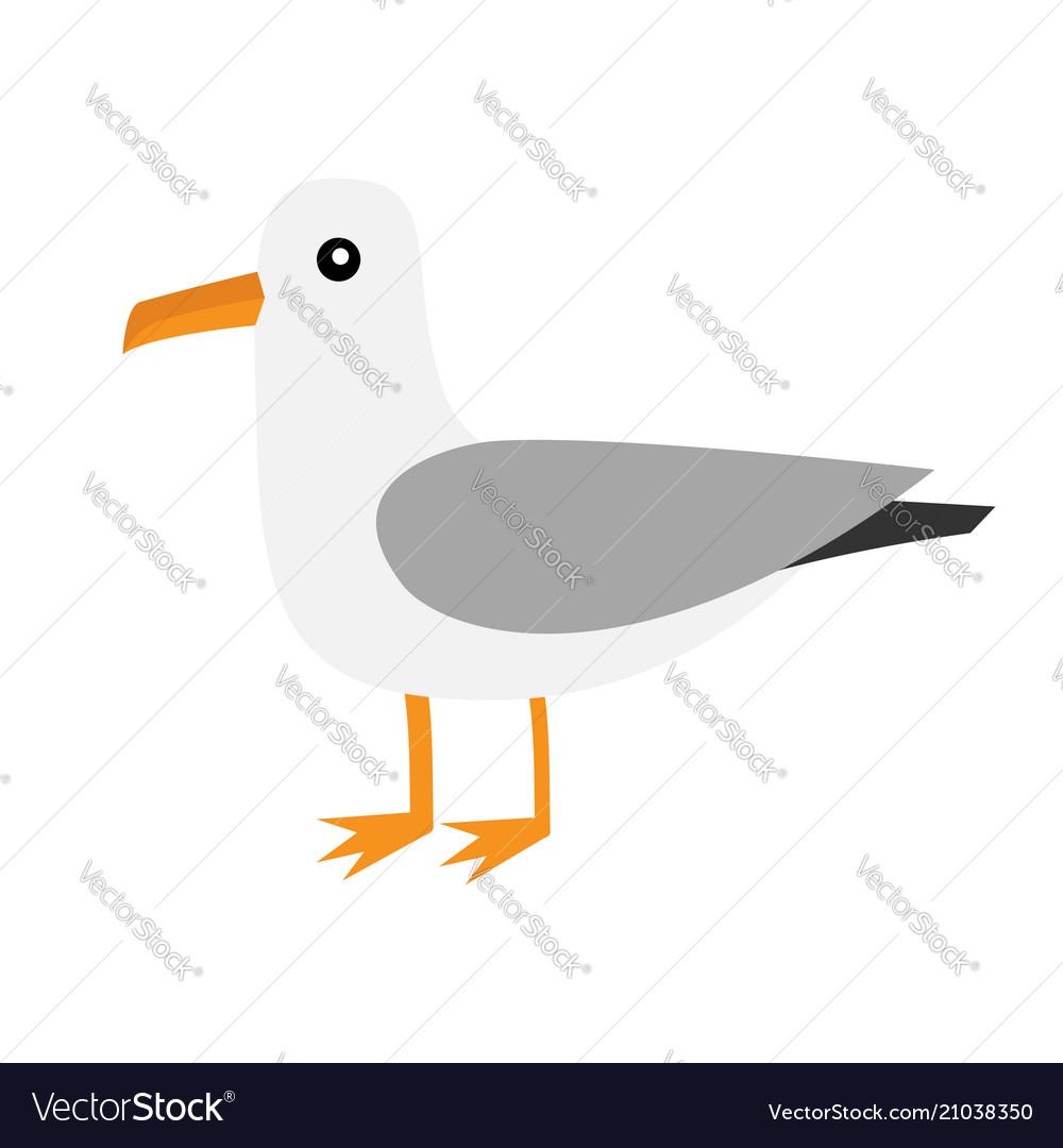 Antarctica albatross icon petrel seagull